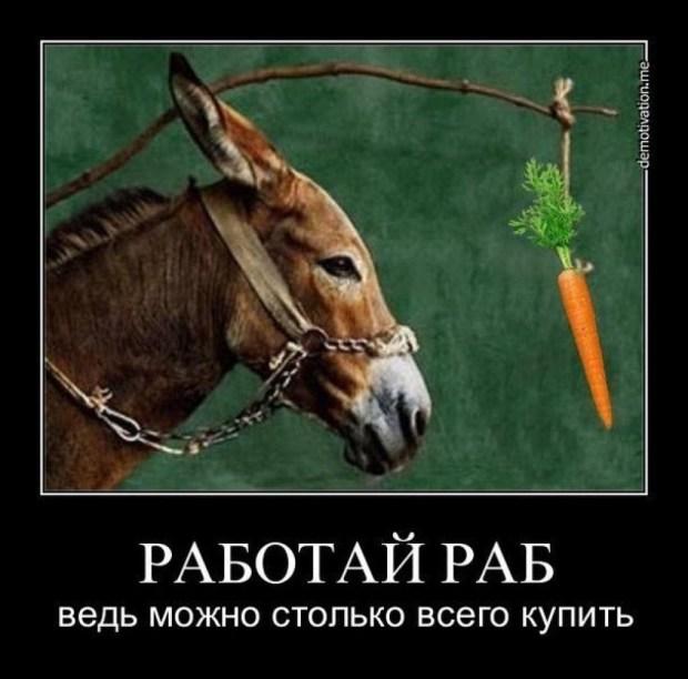 rabotay_rab